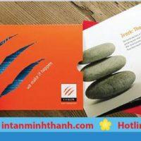 In brochure áp dụng quảng cáo sản phẩm trên thị trường