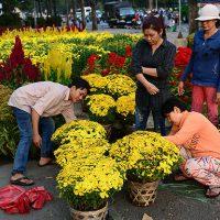Kinh nghiệm bán hoa tươi ngày tết thu lãi khủng